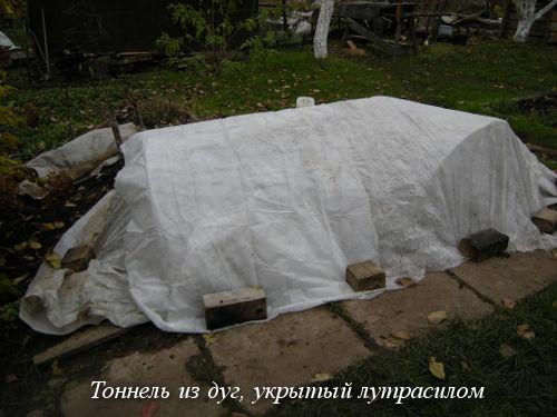 tonnel'-iz-dug